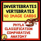 INVERTEBRATES AND VERTEBRATES Photo Sort Classification Unit  MS-LS1-4, 4-LS1-1