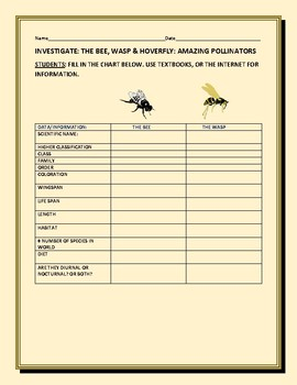 INVESTIGATE: BEE, WASP & HOVERFLY: A SCIENCE CONTENT KNOWLEDGE ACTIVITY