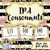 IPA Consonants Posters {IPA Chic & Glam, 25 Basic Consonants}