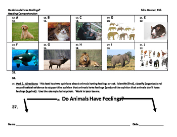 IR Do Animals Have Feelings Reading Comprehension Worksheet