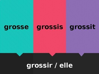IR verbs in French Tapette à mouches Flyswatter game