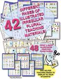 IRREGULAR PLURAL NOUNS: ALL ILLUSTRATED! MEGA PACK! OVER 40 PAGES!  CARDS!