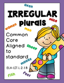 Irregular Plural Nouns Distance Learning