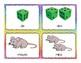 IRREGULAR PLURAL NOUNS Teaching Cards - 23 Pair of Singular/Plural Nouns