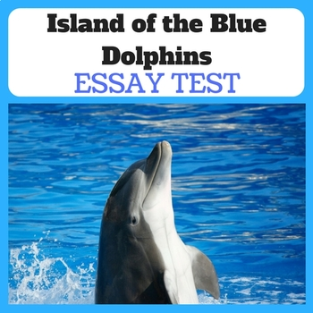 ISLAND OF THE BLUE DOLPHINS ESSAY TEST