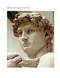 ITALIAN EXAM:  Il Corpo Umano e Le Statue di Michelangelo