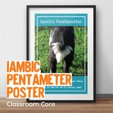 "Iambic Pentameter 20"" x 30"" Poster"