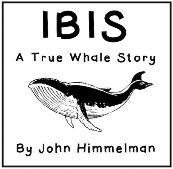 Ibis: A True Whale Story - Picture Book Literacy Unit