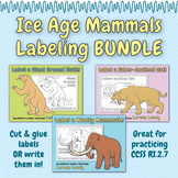 Ice Age Mammals Labeling BUNDLE