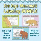 Ice Age Mammals Labeling BUNDLE
