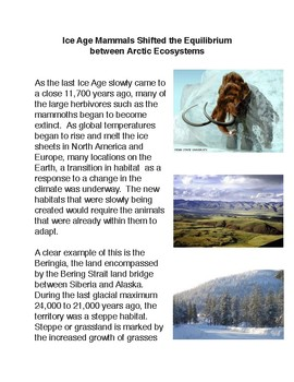 Ice Age Mammals Shifted the Equilibrium  between Arctic Ecosystems