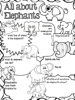 Ice Breakers! - All about Elephants