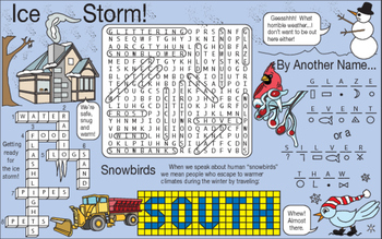 Ice Storm Two-Page Activity Set