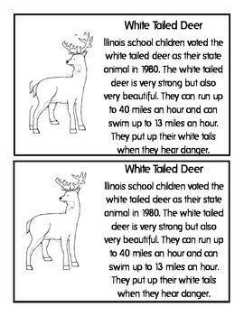 Illinois State Book