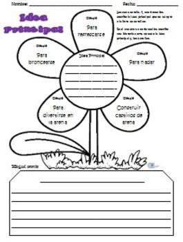 Idea Principal Actividades