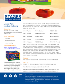 Identical Matching Lesson Plan