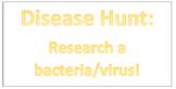 Identify A Disease Worksheet/Webquest
