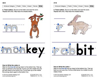 Identify Categories: Lesson 4, Book 4 (Newitt Prereading Series)