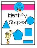 Identify Shapes - Assessment Tool
