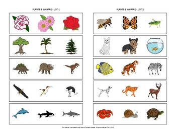 Identify the Category: Plants & Animals