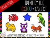Identify the Color + Object Freebie Digital Cards | Distan