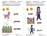 Identify the Letter G: Lesson 1, Book 12 (Newitt Decoding Series)