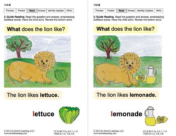 Identify the Letter L: Lesson 10, Book 11 (Newitt Decoding Series)