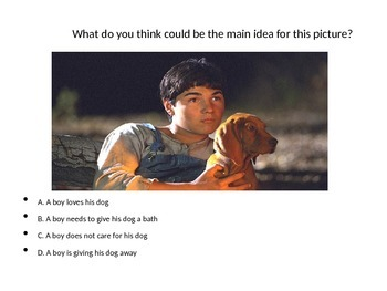 Identify the Main Idea in a Given Image--Practice Questions