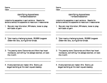 Identifying Appositives Formative 2