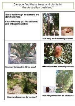 Identifying Australian Bushland Trees Part one