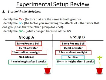Identifying Experimental Groups and Variables Review