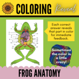 Identifying Internal Organs of Frog (Dissection) - Color Reveal Activity