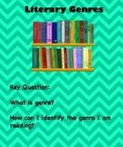 Identifying Literary Genres