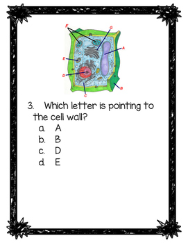 Identifying Parts of a Plant Cell