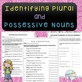 No-Prep - Identifying Plural and Possessive Nouns
