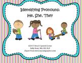 Identifying Pronouns: He, She, They