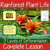 Identifying Tropical Rainforest Plant Life Complete Lesson
