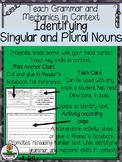 Identifying Singular & Plural Nouns (-s,-es)
