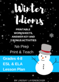 Idiom Lesson Plan & Worksheet - Winter Idioms
