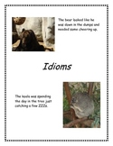Figurative Language Idiom Lesson Plan and Student Activities
