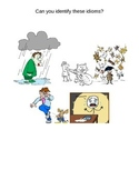 Idioms Bundle-- PowerPoint, Worksheet, and Quiz