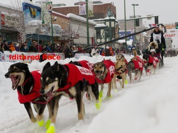 Iditarod Dog Sled race Alaska - Power Point Facts History Pictures