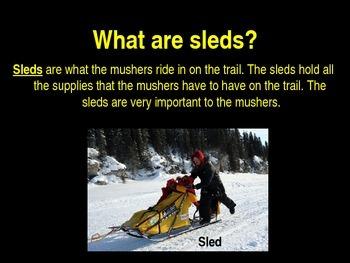 Iditarod Facts