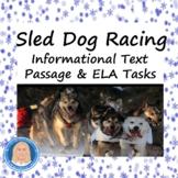 Sled Dog Racing Informational Text Reading & Writing Tasks