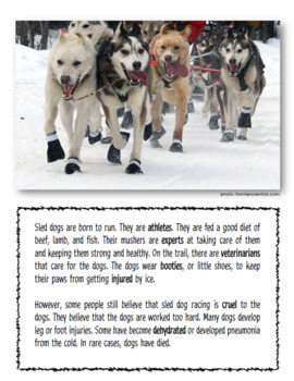 Dog Sledding Language Workbook