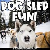 Alaska Sled Dog Race Activities