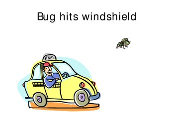 If A Bug Hits A Windshield