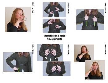 If You Give A Pig A Pancake Sign Language (ASL) Vocabulary Cards
