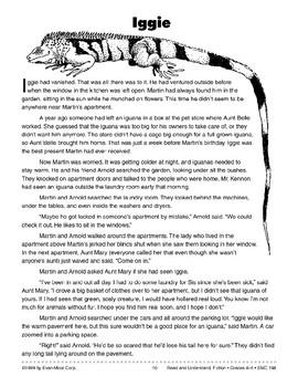 Iggie: Contemporary Realistic Fiction