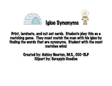 Igloo Synonyms